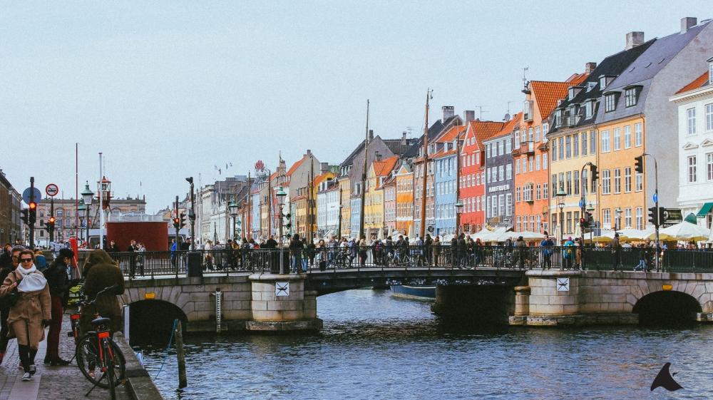 Copenhagen Bridge (1 of 1)